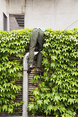 Curious man - p1078m2288670 by Frauke Thielking