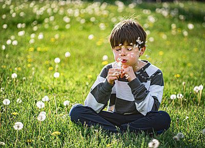 Young boy sitting on the grass blowing seeds off of dandelion flower. - p1166m2113032 by Cavan Images