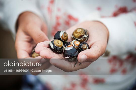 p1166m1099600f von Cavan Images