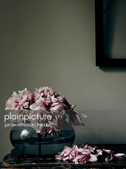 Old pink flowers in vase