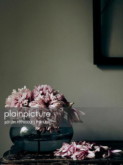 Old pink flowers in vase