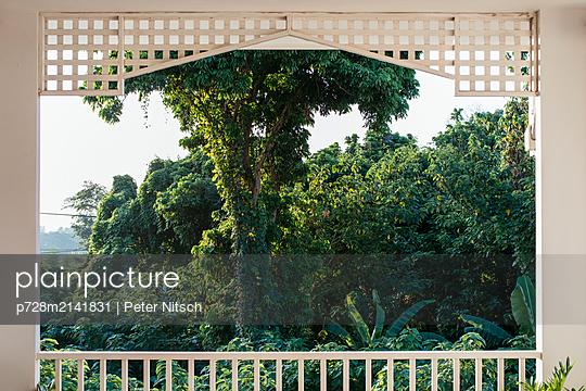Ausblick von einer Veranda auf die grünen Wälder bei Nong Khai - p728m2141831 von Peter Nitsch