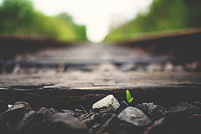 Schienen - p1002m740750 von christian plochacki