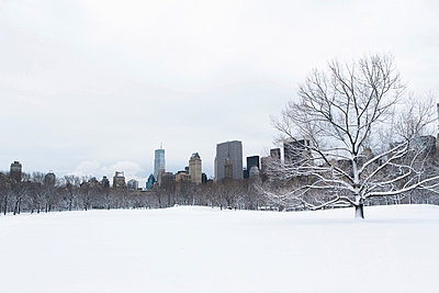 City skyline and snowy urban park - p924m807142f by Ditto
