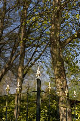 Park - p949m929342 von Frauke Schumann