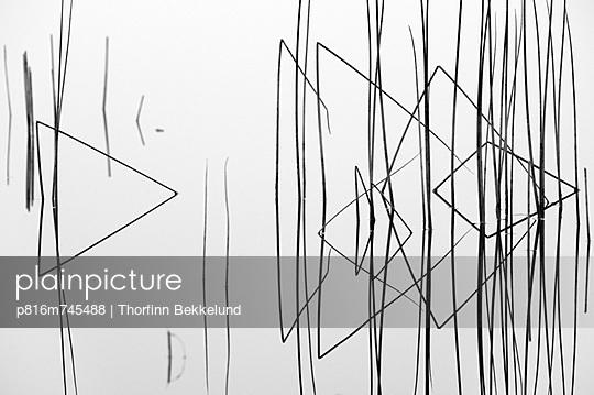 p816m745488 von Thorfinn Bekkelund