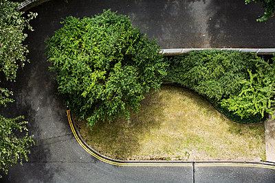 Garten - p1291m2122067 von Marcus Bastel