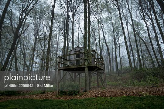 Baumhaus im Wald - p1488m2259842 von Sid Miller