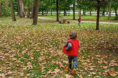 two small children run together through fallen leaves in a park - p1166m2131316 by Cavan Images