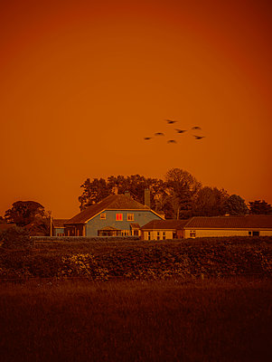 Ireland, Birds flying over houses - p1681m2283677 by Juan Alfonso Solis