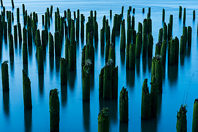 Pilings in the river mark the location of bygone industry; Astoria, Oregon, United States of America - p442m2019739 by Robert L. Potts