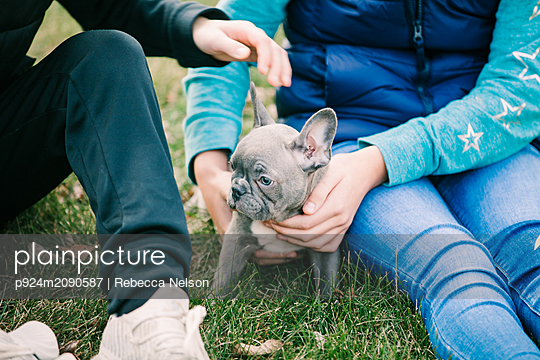 Children playing with puppy on grass - p924m2090587 by Rebecca Nelson