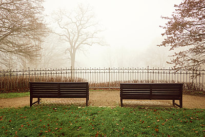 Two benches in the fog, Fischers Park, Hamburg - p851m2186177 by Lohfink