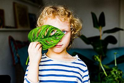 Blond boy with blue eyes looking through leaf at home - p300m2275330 by Irina Heß