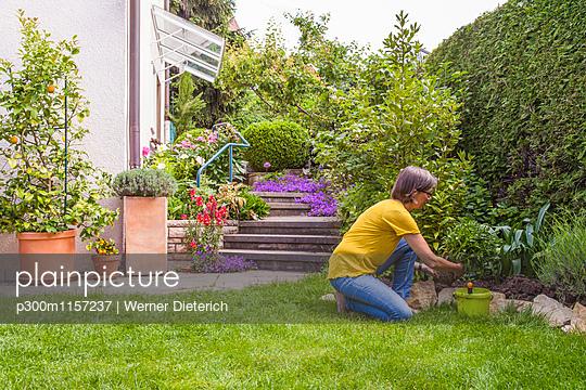 p300m1157237 von Werner Dieterich