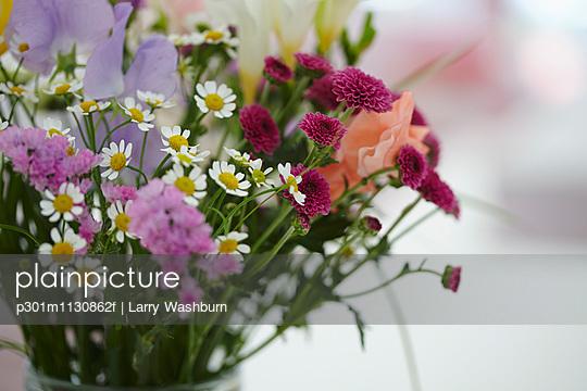 p301m1130862f von Larry Washburn