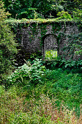 Gate in an old wall - p248m916528 by BY