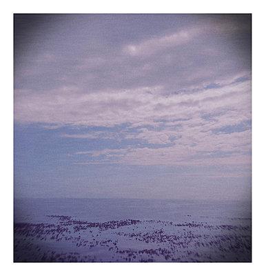 Lomo of the sea - p1089m855774 by Frank Swertz