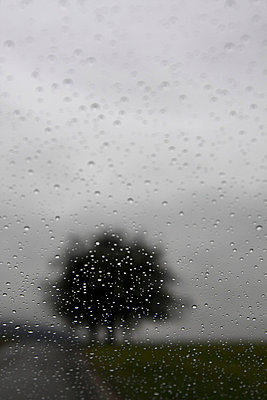 Rainy day - p6470005 by Tine Butter