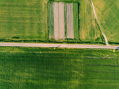 Aerial view of empty road amidst agricultural landscape during sunny day - p1166m2025356 by Cavan Images