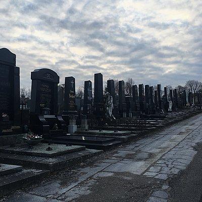 Österreich, Friedhof Wien Ottakring - p1401m2244432 von Jens Goldbeck