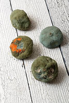 Verschimmelte Mandarinen - p451m1093294 von Anja Weber-Decker