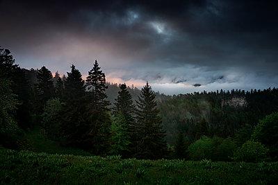 Gewitterwolken über einem Nadelwald, Vercors, Frankreich - p910m2196463 von Philippe Lesprit