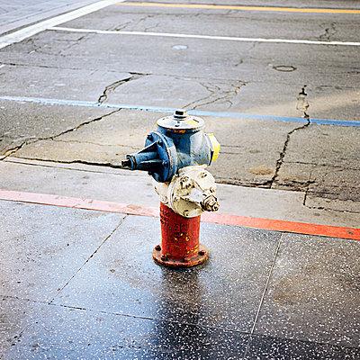 Hydrant - p1008m939790 von Valerie Schmidt