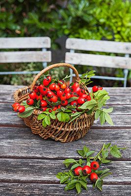 Wickerbasket of rosehips on garden table - p300m1460181 by Gaby Wojciech