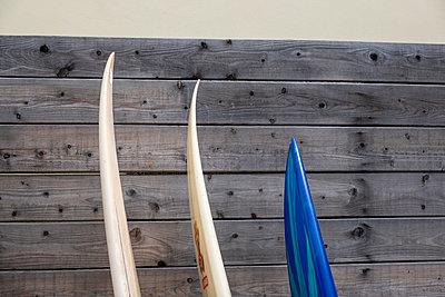 Drei Surfbretter - p1057m2110475 von Stephen Shepherd