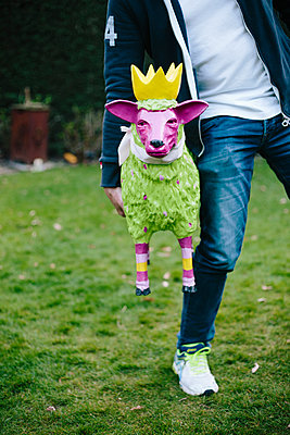 Man with a crazy fake sheep - p1621m2263338 by Anke Doerschlen