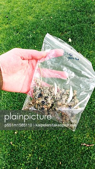 Hanf - p551m1585110 von Kai Peters