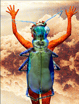 Self Portrait as Beetle - p1636m2216226 by Raina Anderson