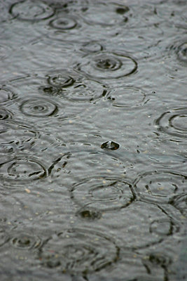 Raining falling on water - p30118397f by Maria Jauregui Ponte