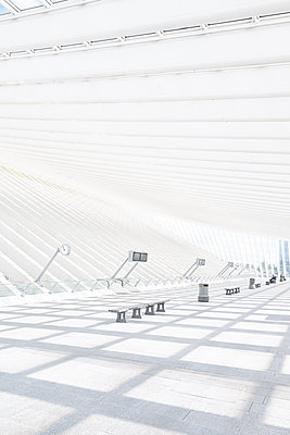 Roof construction in railway station Liège-Guillemins - p587m1155061 by Spitta + Hellwig
