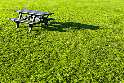Empty picnic table on grass - p429m803625f by Oscar Bjarnason