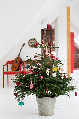 Weihnachtsbaum  - p718m1087333 von Arne Landwehr