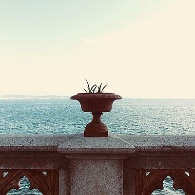 Castello di Miramare, Viale Miramare, Triest, Italien - p083m2089554 von Thomas Lemmler