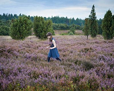 Picking heath - p1124m931798 by Willing-Holtz
