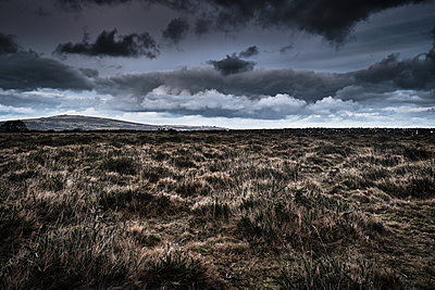 Moorland, Wild Grassland, Cloudy Day - p1166m2208370 by Cavan Images