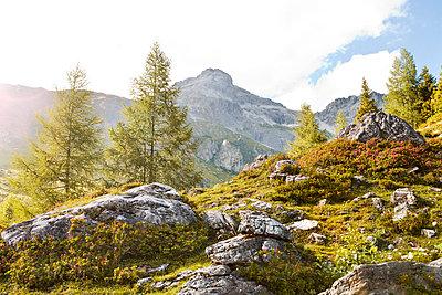 p300m980948f von Katja Velmans