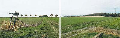 Wiese - p1205m1020935 von Annet van der Voort