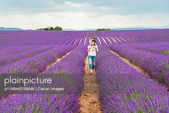 Mother and daughter walking among lavender fields in the summer - p1166m2136646 by Cavan Images