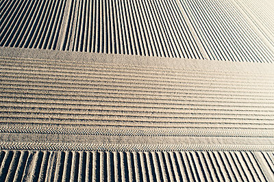 Frisch angelegte Felder, Kartoffelanbau - p1079m2181985 von Ulrich Mertens