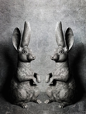 Two rabbits - p1052m912039 by Wolfgang Ludwig