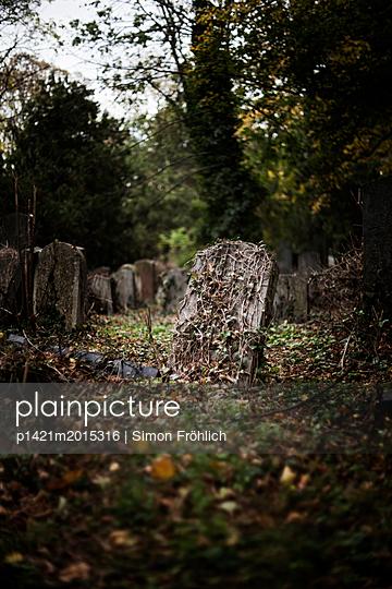 Zentralfriedhof - p1421m2015316 von Simon Fröhlich