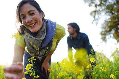 Woman picking yellow flowers on meadow, man in the background - p300m2154731 by Eyecatcher.pro