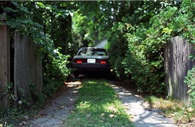 drive way - p5678780 by Jesse Untracht-Oakner