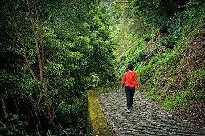 Young woman trekking in Faial da Terra; Sao Miguel, Azores, Portugal - p442m1180091 by Dosfotos