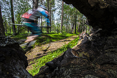 Mountain biker races by on the trails of northern Sweden. - p343m1090332 by Elias Kunosson